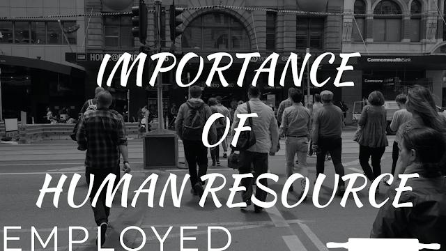 Importances of Human Resource